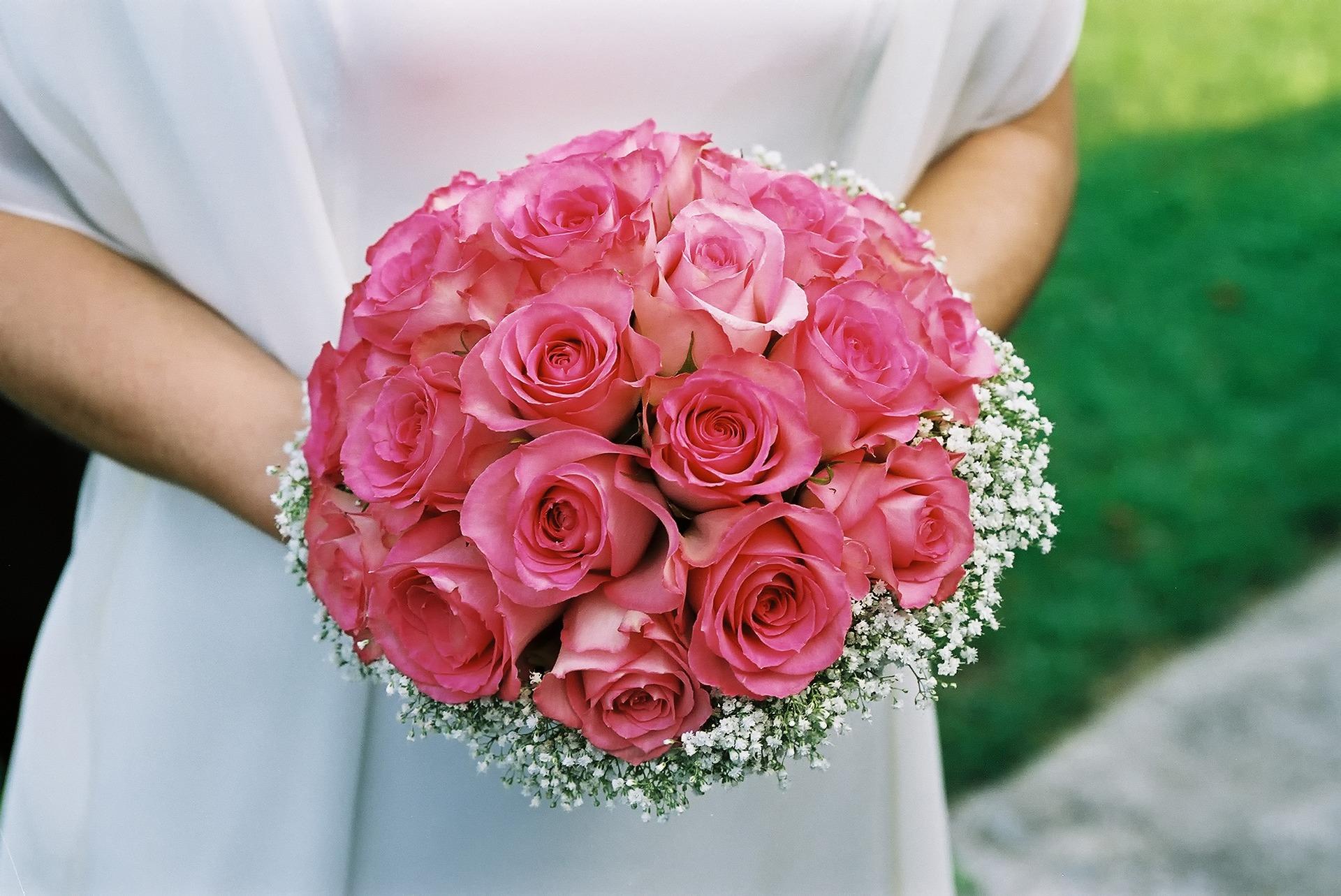 flower-3353177_1920